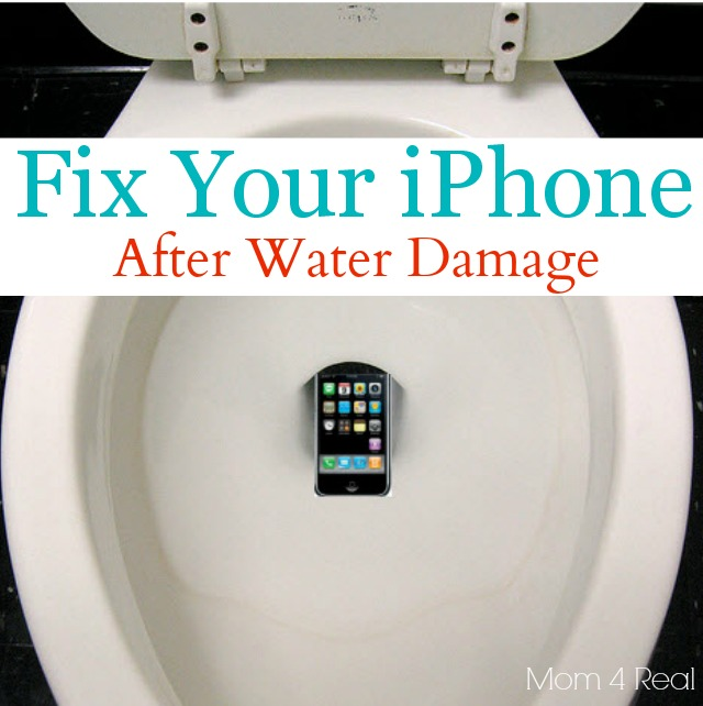 Fix Your iPhone or Cell Phone After Water Damage