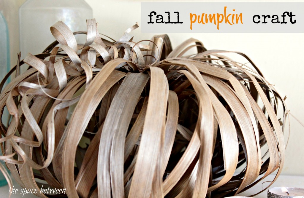 Primp Your Pumpkin Features and an Announcement!