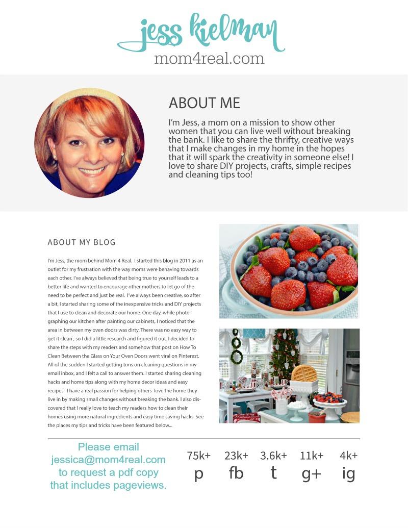 media-kit-page1-blog