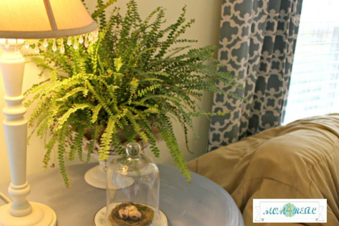 spring-decor-fresh-flowers-ferns