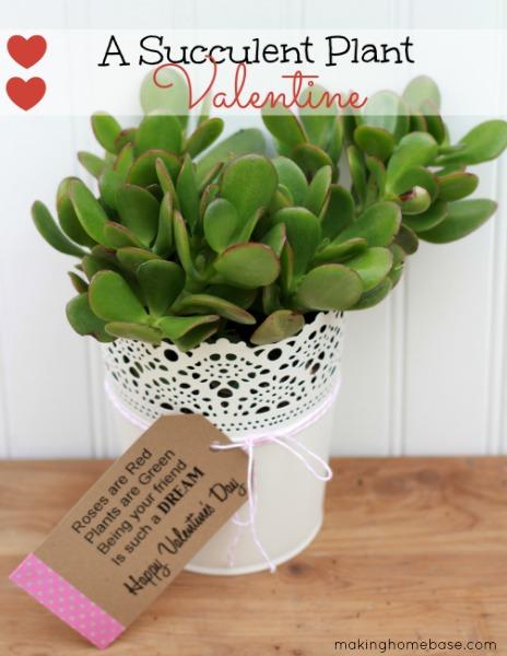 A Succulent Plant Valentine