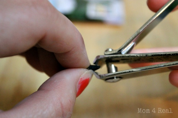 clip the end of a seed off with nail clippers to grow faster