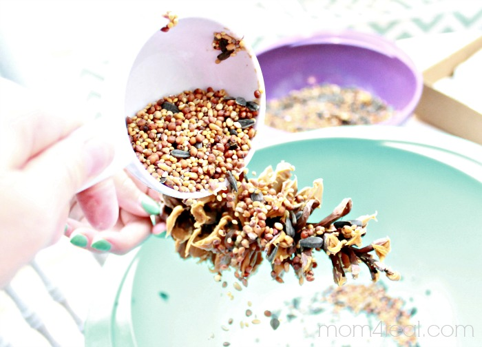 Add peanut butter and bird seed to a pine cone to feed the birds in the winter