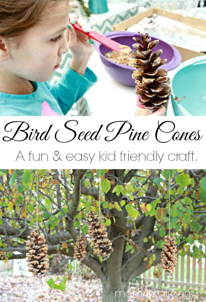 Bird Seed Pine Cone Craft - An Easy Kid Friendly Craft