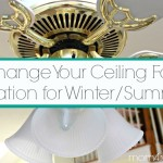 Change Your Ceiling Fan Rotation For Winter and Summer