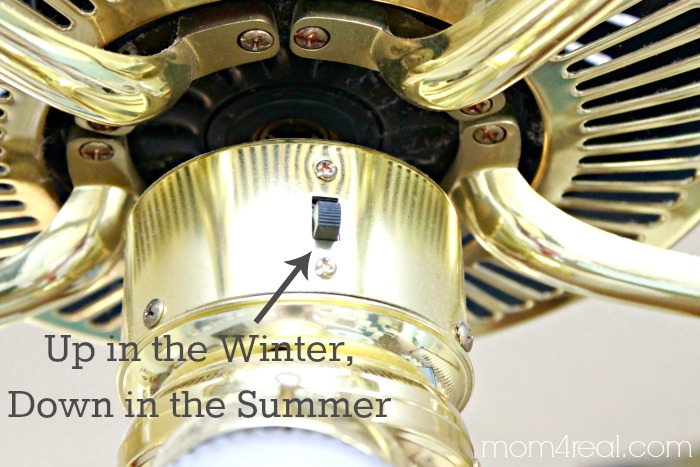 Change the Direction of Your Ceiling Fan in the Summer and Winter for ...