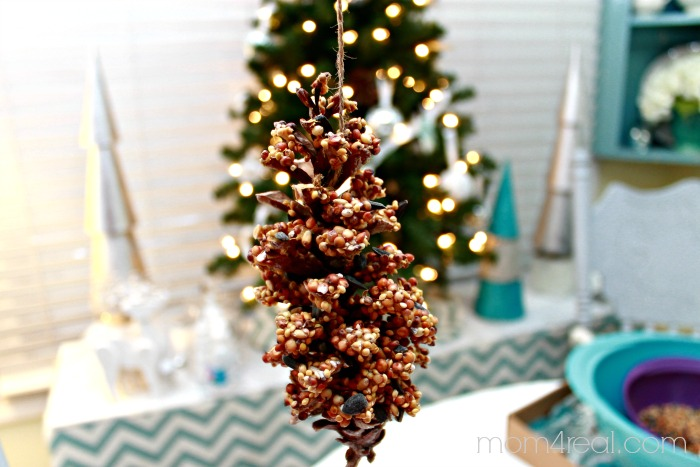 Kid Craft - Make Bird Seed Pine Cones