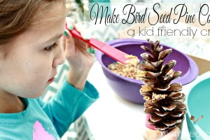 Make Bird Seed Pine Cones - A Kid Friendly Craft