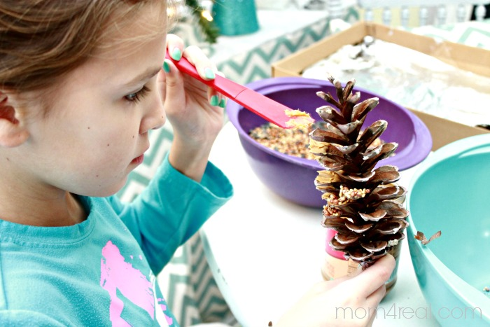 Make Bird Seed Pine Cones