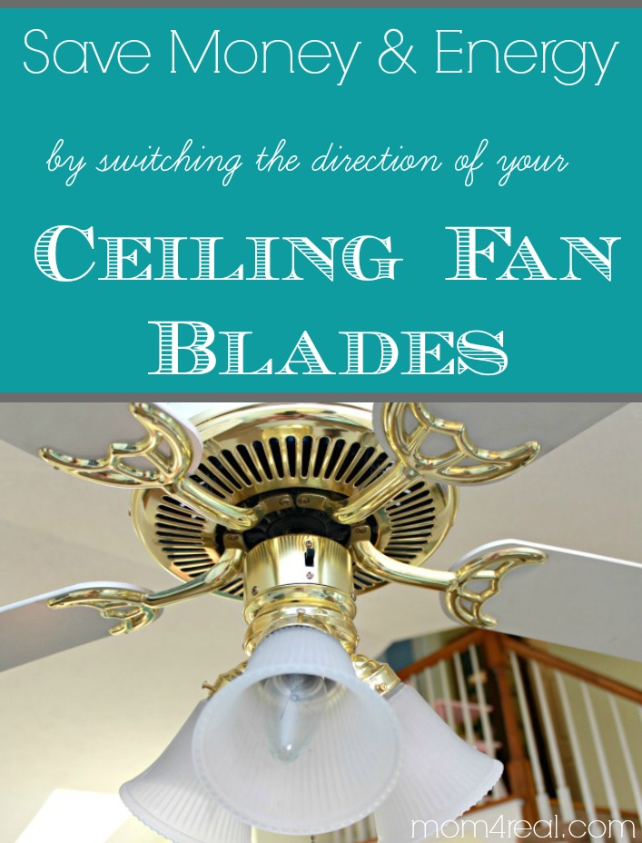 Save Money and Energy by Switching the Direction of Your Ceiling Fan in the Summer and Winter