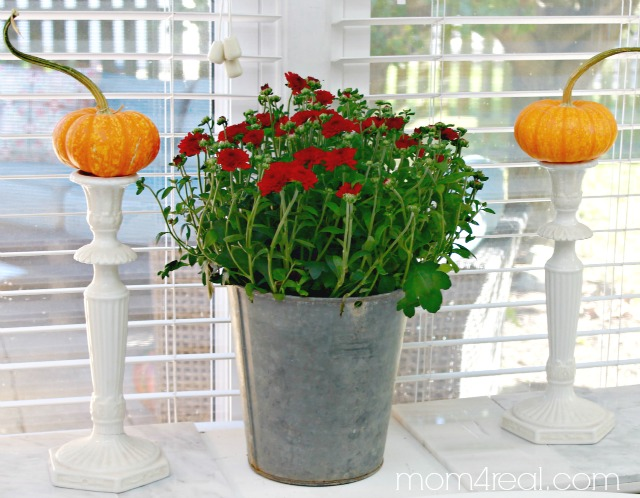 Simple Fall Vignettes