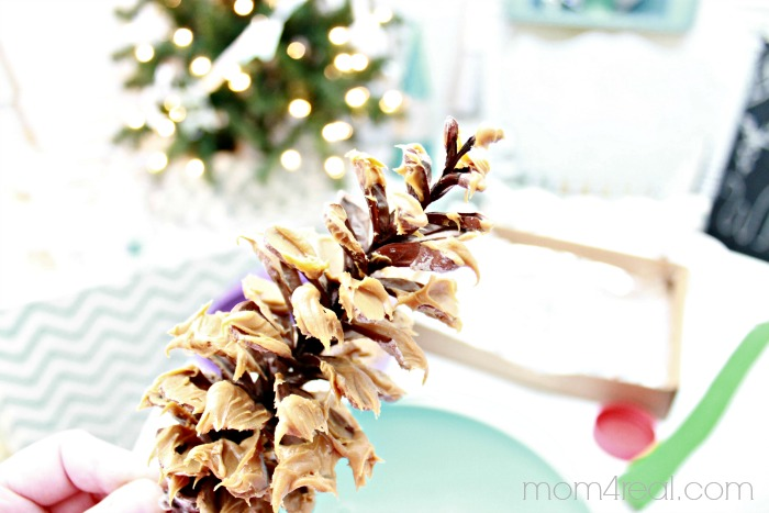 Use peanut butter and birdseed to make bird seed pine cones