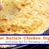 Buffalo Chicken Dip Recipe - Crock Pot