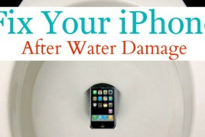 How to fix your iPhone if it falls in the toilet or water
