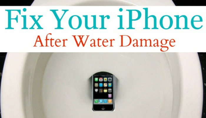My Iphone After It Fell In The Toilet