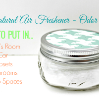 All Natural Air Freshener - Odor Absorber
