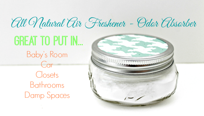 Homemade Air Freshener ~ Odor Absorber