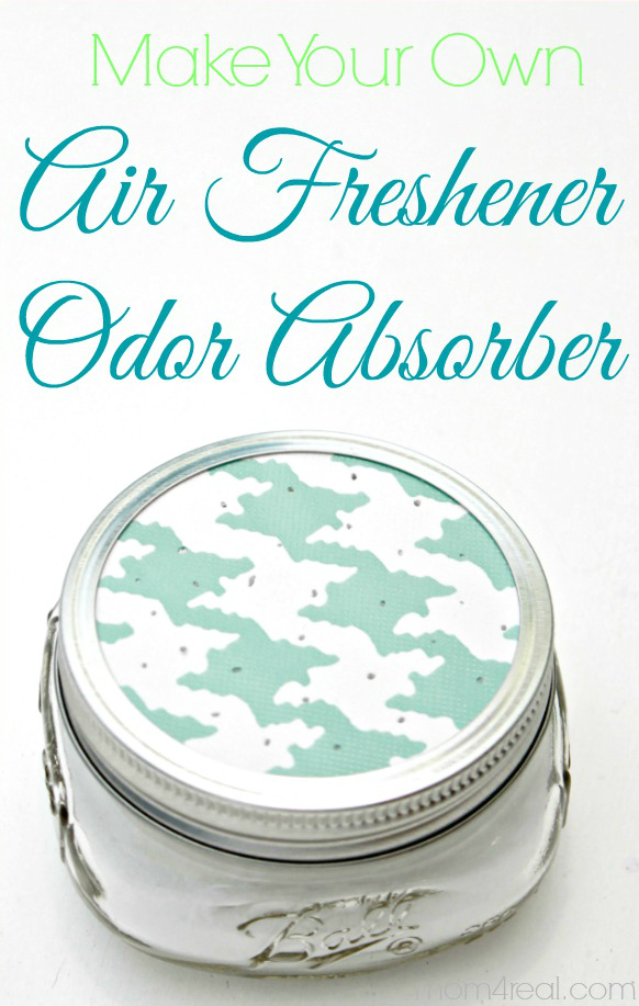 Homemade All Natural Air Freshener / Odor Absorber...get This And Tons Of