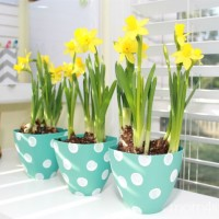 Pretty Polka Dot Flower Pots Craft Idea!