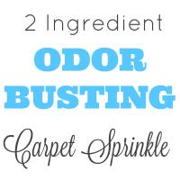 2 Ingredient Pet Odor Busting Carpet Sprinkle Recipe