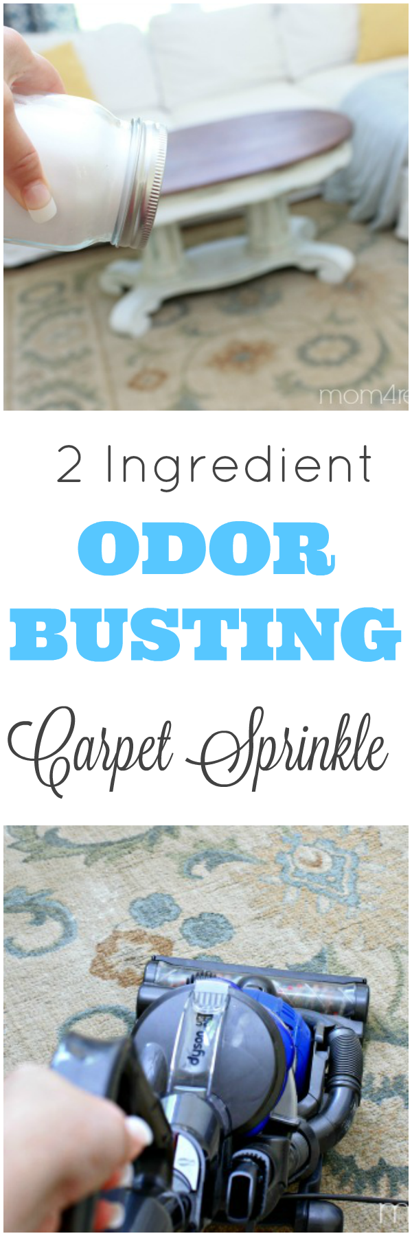 2-INGREDIENT-ODOR-BUSTING-CARPET-SPRINKLE-RECIPE