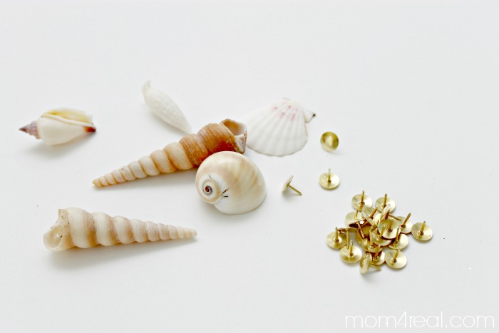 Hot glue thumb tacks onto sea shells to make decorative tacks