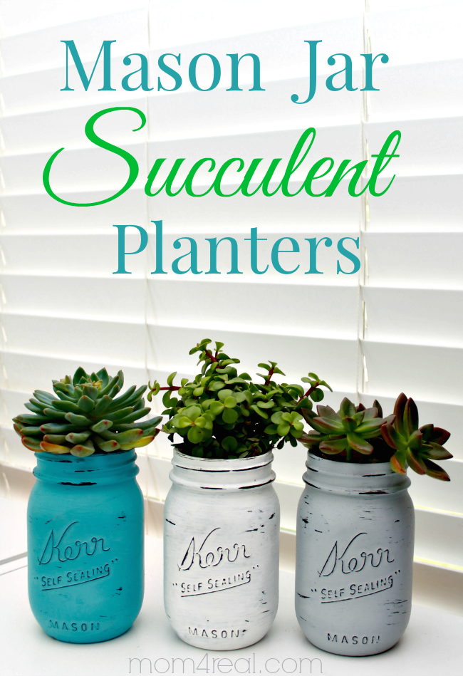 Mason Jar Succulents Planters ~ Indoor Gardening Idea - Mom 4 Real