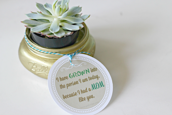 Mother's Day Mason Jar Gift and Free Printable Tag 2