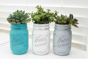 Painted Mason Jars With Succulents