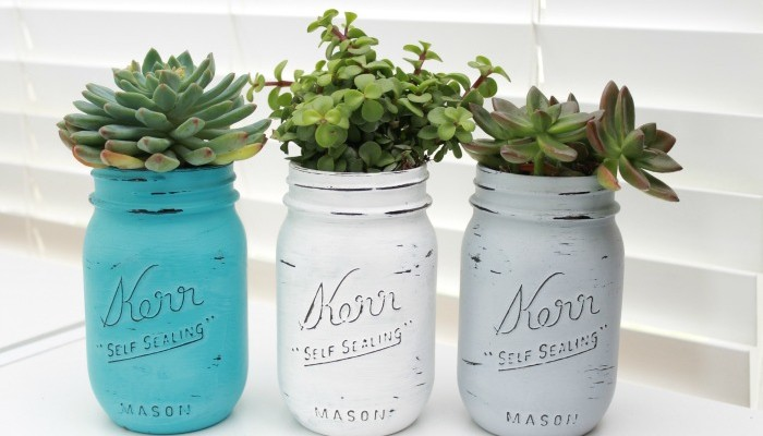 Mason Jar Succulents Planters ~ Indoor Gardening Idea