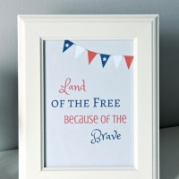 Patriotic 4th of July Printables ~ Free!