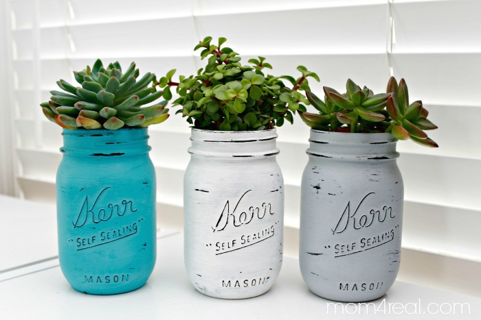 Mason Jar Succulents Planters