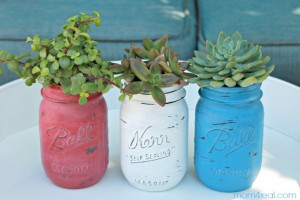 Red White and Blue Mason Jar Planters with Succulents