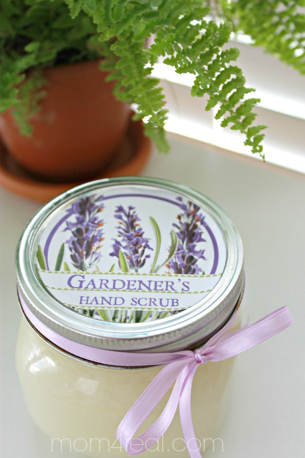 Lavender and Coconut Oil Sugar Scrub Recipe