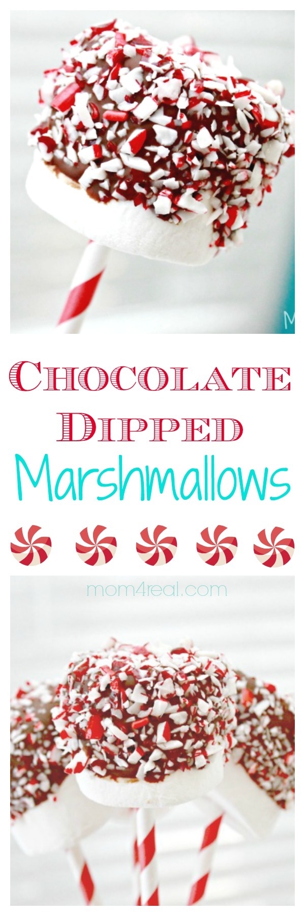 Chocolate Dipped Marshmallows Pops with Sprinkles