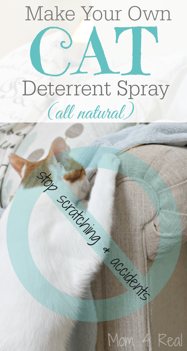 Homemade Cat Deterrent Spray - Stop The Scratching and Accidents