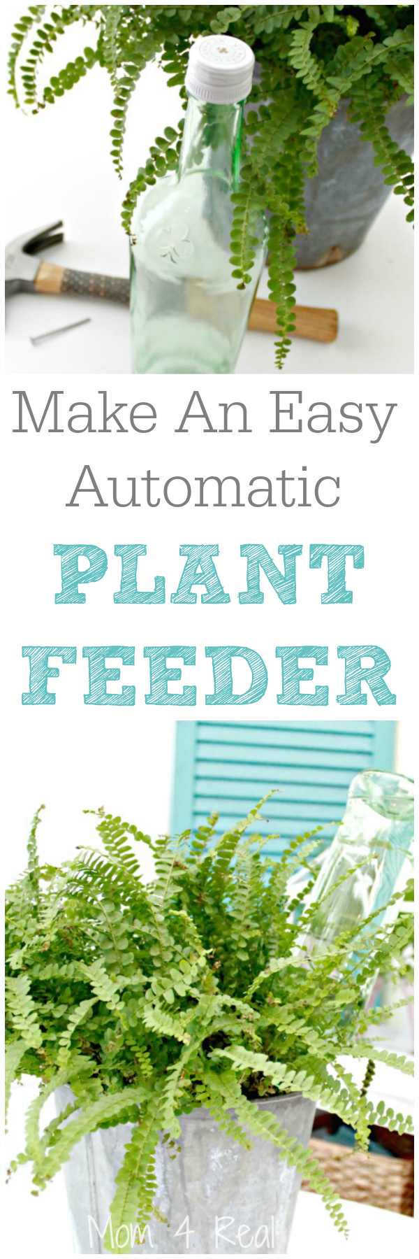 Make an easy automatic plant feeder in minutes!