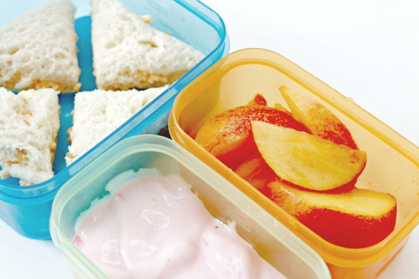 Kid's Lunch Ideas and Easy Packing Solutions