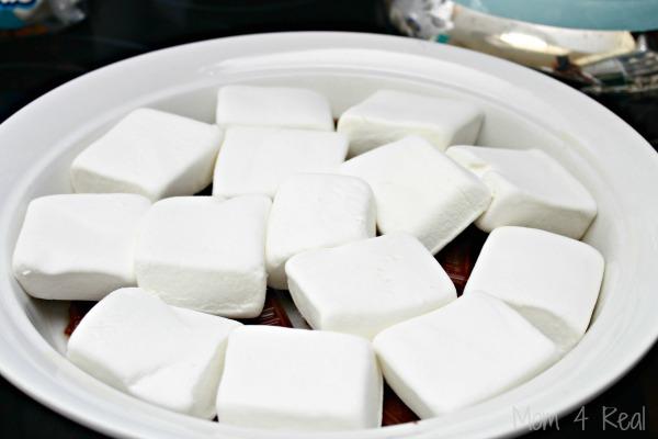 Marshmallow-Smores