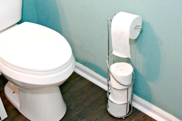 Celebrate National Toilet Paper Day and Toss The Tube - Mom 4 Real