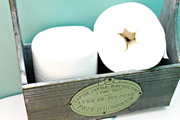 Celebrate National Toilet Paper Day and Toss The Tube