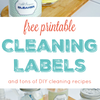 Free printable cleaning labels and tons of DIY cleaning solutions and recipes
