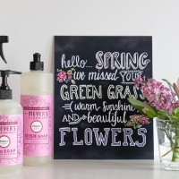 Free Mrs Meyers Spring Cleaning Kit Offer For My Readers