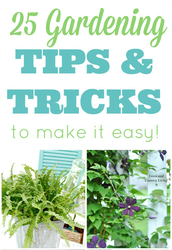 25 easy gardening tips and tricks