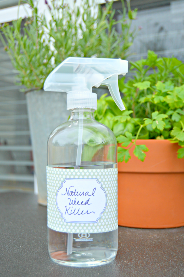 What is a good homemade weed killer?