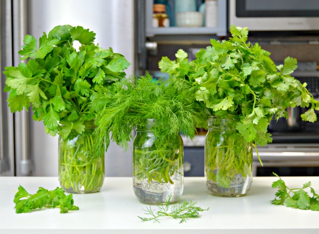 Keep Herbs Fresh Longer By Storing In Glass Vases With Water