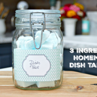 3-ingredient-homemade-dish-tablets