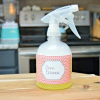 Homemade Oven Cleaner and How To Get Your Oven Clean Inside and Out