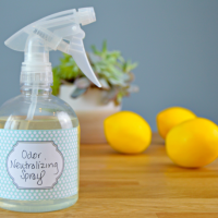 Homemade Odor Neutralizer Spray