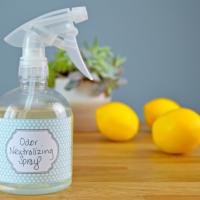 diy-odor-neutralizer